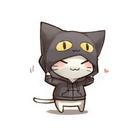 Katze Groove