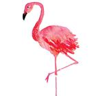 Pinku Pinkiep