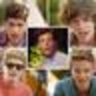 One Direction Lovers