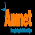 Amnet SEO