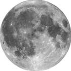 luna *:・゚✧*:・゚✧