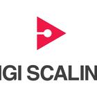 Digiscaling_