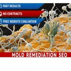 Mold Remediation Contractor SEO