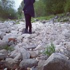 Annka im Wunderland