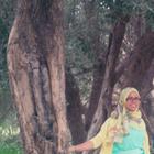 Hanane Abed