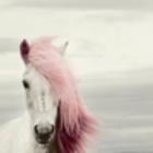 I'm Fxcking Unicorn ❤️