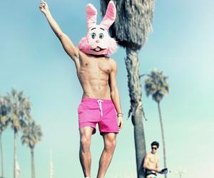 beach, rabbit, and body image