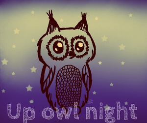 night, owl, and picture image