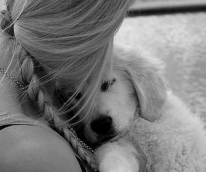 dog, girl, and hair image