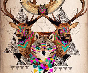 owl, wolf, and animals image