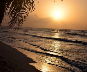 beach, sunset, and paradise image