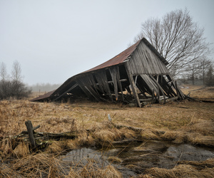 abandoned, cabin, and house image