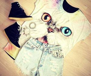 fashion, cat, and shoes image