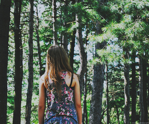 back, forest, and green image
