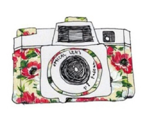 camera, flowers, and photography image