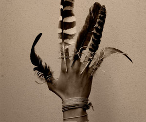 feather, hand, and indian image