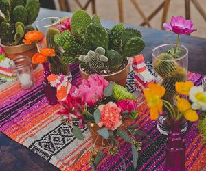 flowers, cactus, and mexico image