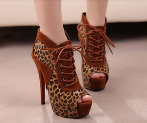 shoes, leopard, and style image