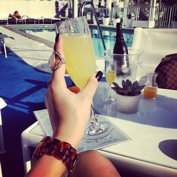 luxury, vacation, and mimosa image