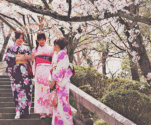 asian, cherry blossoms, and japan image