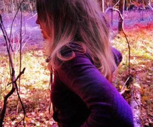 autumn, colour, and colourful image