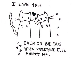 cats, love, and qoutes image