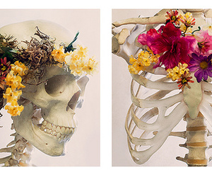 bones, flowers, and skelleton image
