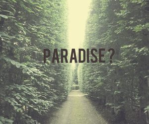 paradise and question image