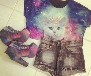 cat, fashion, and cool image