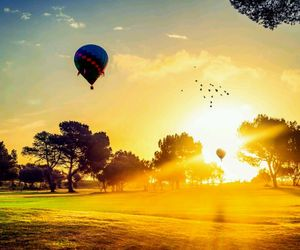 nature, sun, and ballonfly image