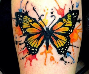 butterfly, colorful, and love image