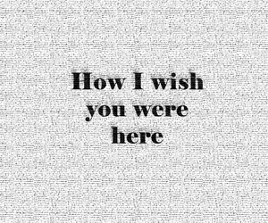 lyric, Pink Floyd, and song image