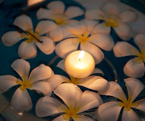 candle, candle light, and flowers image