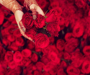 rose, henna, and red image
