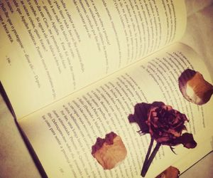 beautiful, book, and flower image