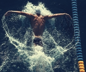 butterfly, swimming, and swim image