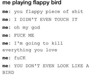 flappy bird, funny, and bird image