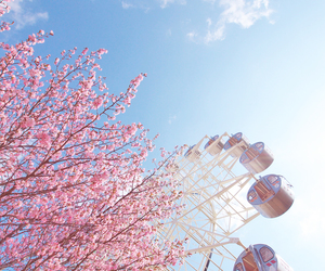 ferris wheel, flowers, and pink image