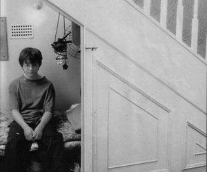 fetus and harry potter image
