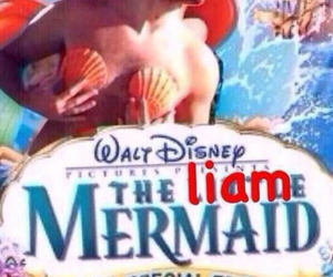 holiday, liam payne, and one direction image