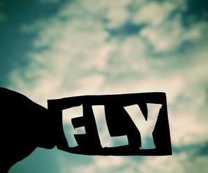 fly, sky, and quote image