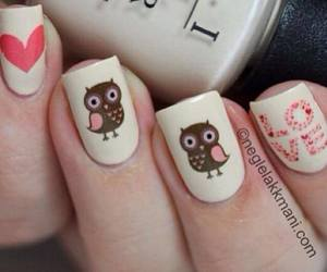 nails, owl, and love image