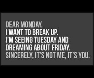 monday, quotes, and funny image