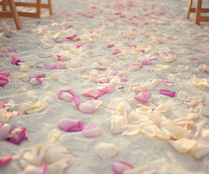 beach, sand, and flowers image