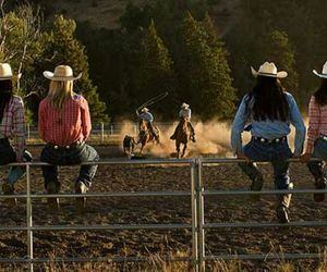 cowboy, cowgirls, and cows image