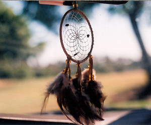 50mm, feathers, and catcher image