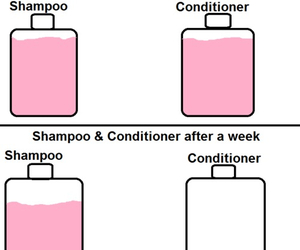 shampoo, conditioner, and true image