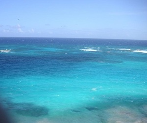 blue, ocean, and tropical image