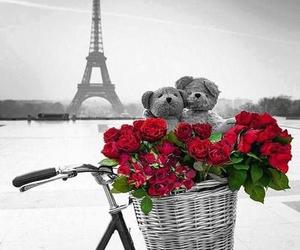 paris, rose, and bear image