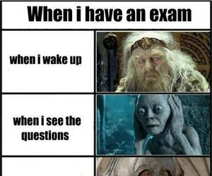 exam, funny, and lord of the rings image